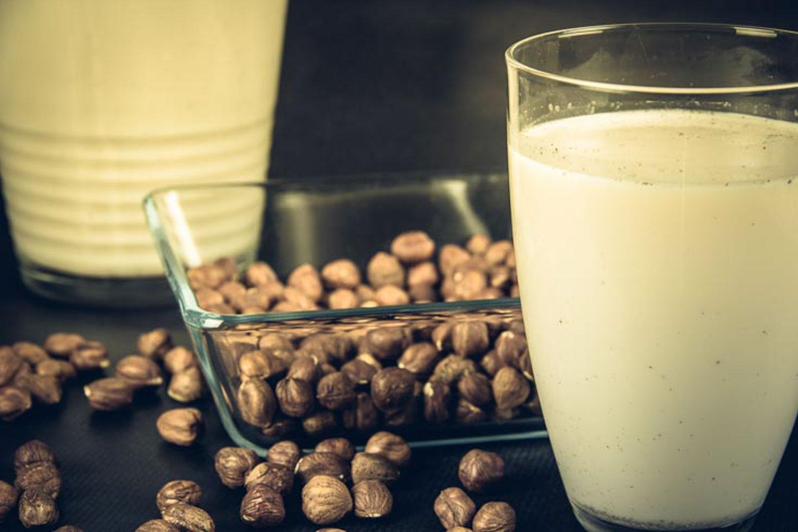 Haselnussmilch – Low Carb – vegan – glutenfrei – Rohkost