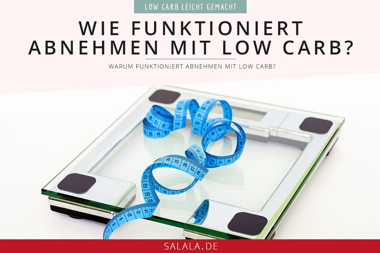 Wie funktioniert Abnehmen mit Low Carb und warum #lowcarb #abnehmenmitlowcarb #abnehmenmitfett #wiefunktioniertabnehmen #lowcarbwissen
