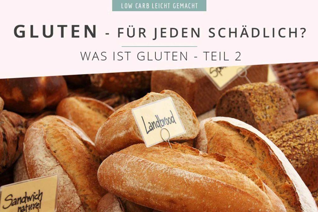 Wie schädlich ist dieses Gluten? Sollte wirklich jeder auf Gluten verzichten? Was Gliadin und Glutenin in unserem Darm anrichten können, das erfährst du in diesem Artikel. Danach kannst du selber entscheiden, ob du glutenfrei leben möchtest oder nicht. #lowcarbwissen #gluten #weizenmehl #glutenfrei #weizenfrei #gliadin #glutenin #glutenfreigesund