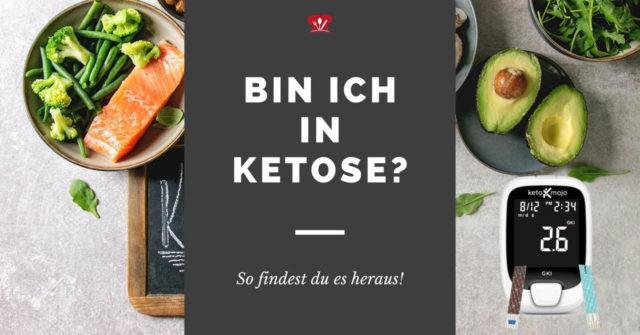 Bin ich in Ketose? So kannst du feststellen, ob du in Ketose bist.