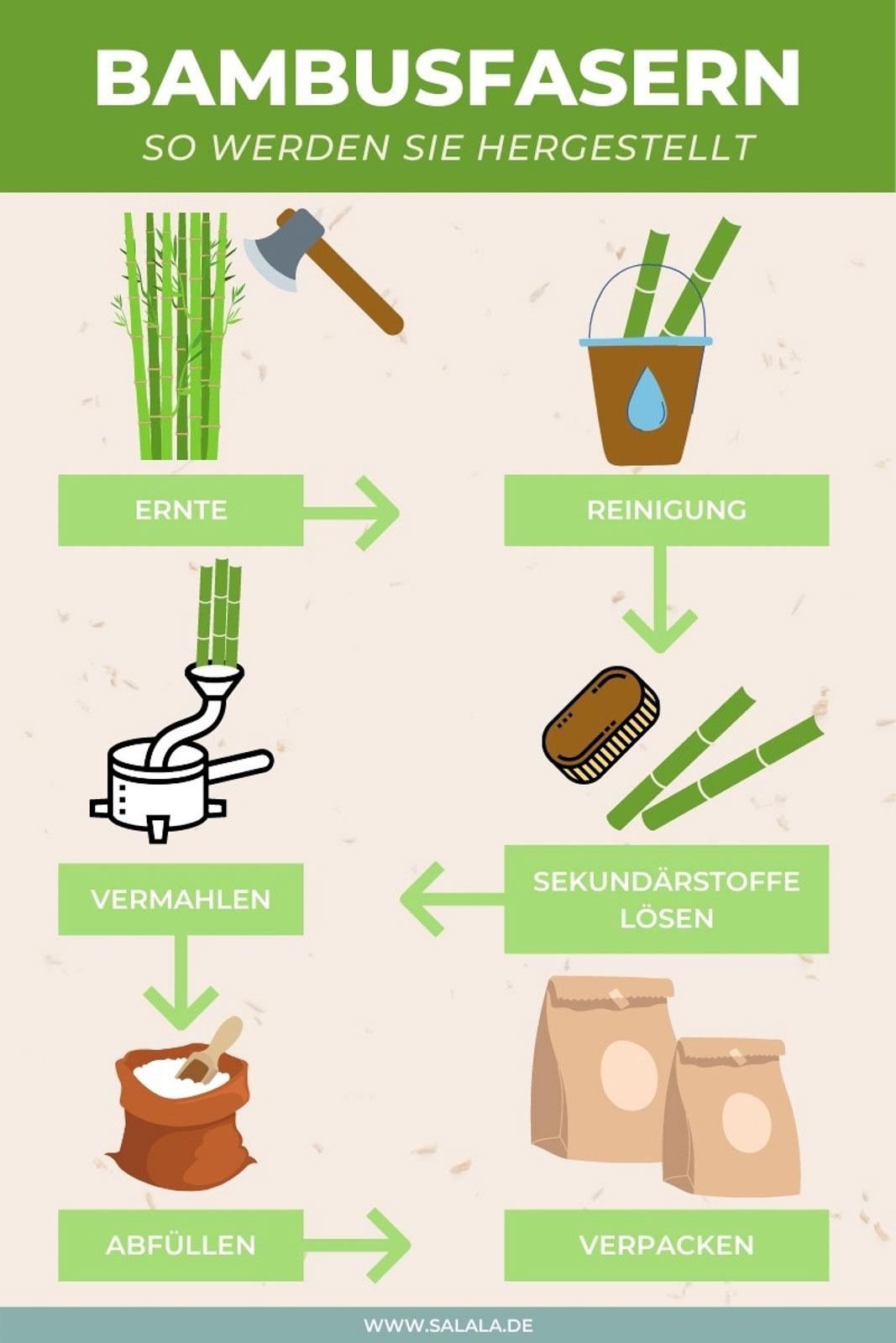 Bambusfasern Herstellung Infografik 1