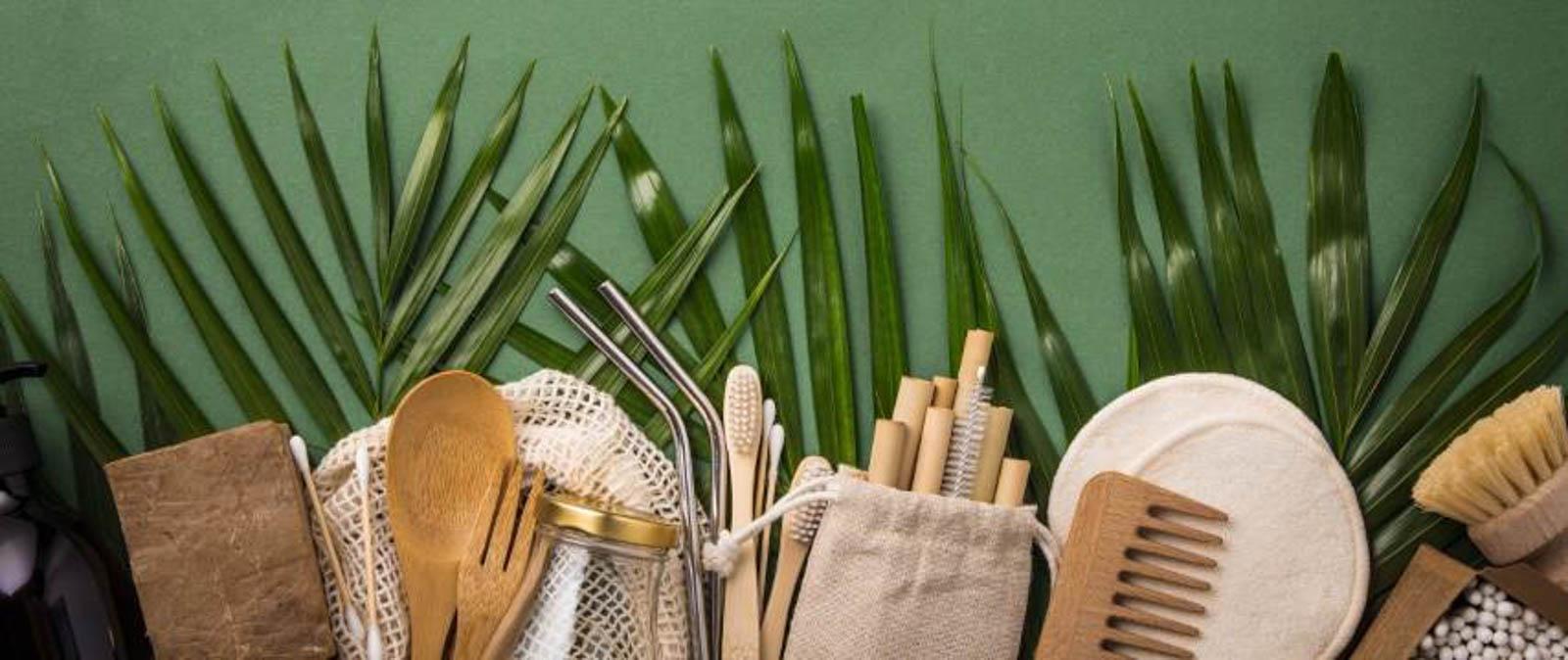 Bambus wird nicht nur als Baumaterial und Nahrungsmittel verwendet.